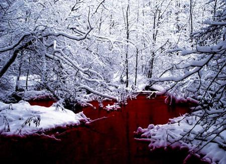 sangreynieve